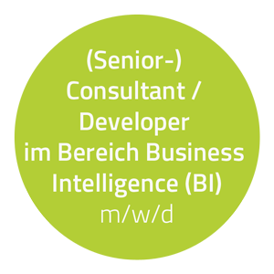 hartech sucht: (Senior-) Consultant / Developer im Bereich Business Intelligence (BI) (m/w/d)